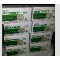 Wholesale Injectable Growth Hormone Supplements HGH Hygetropin improvement in overall physical 100iu/Kit from china suppliers