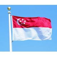 Buy cheap Door-to-Door Shipping Singapore Special Line DDP/FOB Express Service from wholesalers