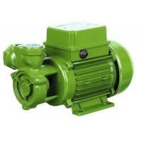 Wholesale Small Electric Peripheral Water Pump Single Phase With Thermal Overload Protector from china suppliers