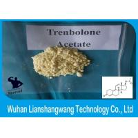 Wholesale CAS 10161-34-9 Trenbolone Powder High Purity Fast Bodybuilding Supplement from china suppliers