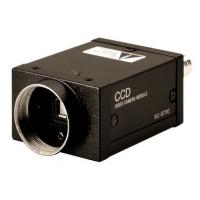 Wholesale SONY XC-ST30 1/3 type CCD B/W Camera EIA from china suppliers