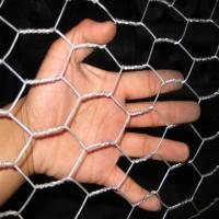 Wholesale 25mm 30mm or 40mm Electric Galvanised Wire Chicken Rabbit Wire Mesh Fence from china suppliers