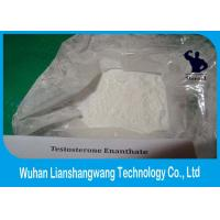 Wholesale CAS 315-37-7 Weight Training Testosterone Enanthate , White Test E Powder Male Sexual Medicine from china suppliers