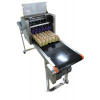 Eggs Continuous Inkjet PrinterWith Date Automatically Updated Programme