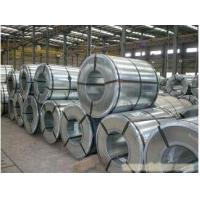 Wholesale Hot-dip Galvanized Steel And Prepainted Steel Coil 0.8mm Thickness from china suppliers