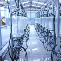 Wholesale Automatic Glass Milk Measure Herringbone Milking Parlor System from china suppliers