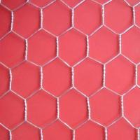 Wholesale Hot Dipped Galvanized  Hexagonal Wire Mesh With High Quality And Low Price from china suppliers