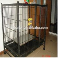 Wholesale hebei high quality animal cage panels from china suppliers