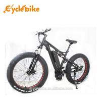 Wholesale 48 V 1000w Mid Drive Motor Fat Tire Powerful Electric Bike For Ladies , No Foldable from china suppliers