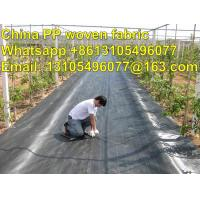 Wholesale high quality export America pp weed control cover /weed barrier/ground cover from china suppliers