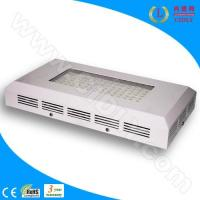 Wholesale 90W LED Reef Coral Aquarium Lights (CDL-A90W) from china suppliers