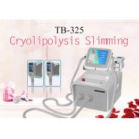 Wholesale 2 Cryoliposis Treatment Handle Simultaneously With 3 Size Body Slimming Machine 1800W from china suppliers