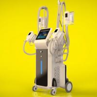Buy cheap 4 handles cryolipolysis fat freeze slimming machine / cryolipolysis slimming machine / 4 handles work at the same time from wholesalers