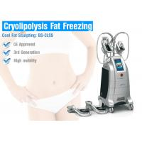 Wholesale Cryolipolysis Fat Freeze Slimming Machine With 4 Handles For Beauty Salon Or Clinic Use from china suppliers