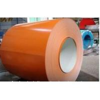 Wholesale Hot Dip Galvanised Sheet And Coil , PPGI Steel Coils 3000mm 6000mm Length from china suppliers
