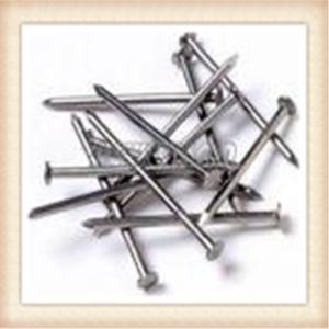 Quality Electro galvanized common wire nail/common iron wire nails/bright common nails factory for sale