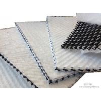 Wholesale HDPE Drainage geocomposite/3D geonet,ODM/OEM acceptable three dimension geocomposite drainage net from china suppliers