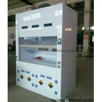 Wholesale Anti Corrosion Polypropylene Fume Hoods With PP Cabinets For Air Handing Systems from china suppliers