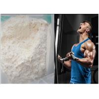 Wholesale High Purity 99% Androstenedione Fat Burning Prohormones White Crystalline Powder from china suppliers