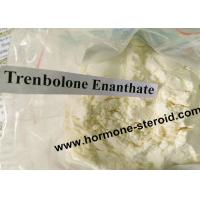 Wholesale Professional Trenbolone Enanthate 200mg Anabolic Bodybuilding Muscle Enhancing 10161-33-8 from china suppliers