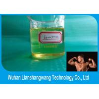 Wholesale CAS 13103-34-9 Androgenic Anabolic Steroids Yellow Oil Steroid Boldenone Undecylenate / Equipoise from china suppliers