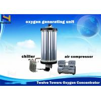Wholesale 100% Twelve Towers PSA Gas Equipments Type Oxygen Concentrator Repair 3 - 15L from china suppliers