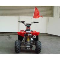 Quality Small Size 4 x 4 Utility Atv 70cc 90cc 110cc , Kids Four Wheelers With Two Wheel Drive for sale