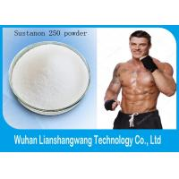 Wholesale Cutting Cycle Steroids White Sustanon 250 Powder , Injectable Steroids for Muscle Buiding from china suppliers