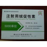Wholesale Chorionic Gonadotrophin for Injection(HCG) YANTAI 5000 from china suppliers