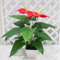 Wholesale Real touch artificial flower anthurium plant from china suppliers