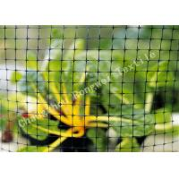 Wholesale Anti Animal Garden Fence Netting Raptor and Small Mammal Enclosure Handrail Nets for Trees from china suppliers