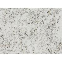 Buy cheap Regular Specification White Plateau Snow Granite Kitchen Wall Living Room Floor Tile from wholesalers
