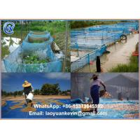 Buy cheap Hot Selling 100% HDPE 16 X 16 Eyes sea food grain rice fish drying net nylon woven screen net from wholesalers