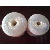 Quality Agriculture Packing Banana PP twine , 100% virgin PP polypropylene string for sale