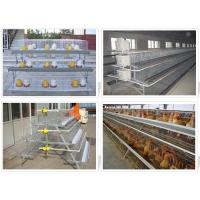 Buy cheap Chicken cages chicken farming cages from wholesalers