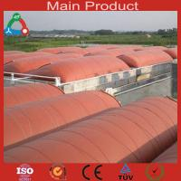 Wholesale New energy Industry Fuel Application biogas plant from china suppliers