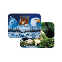 Wholesale Waterproof Plastice 3D Lenticular Placemats Directly Printing PET from china suppliers