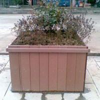 Wholesale 100% Eco-friendly WPC Flower Pot, Rust- and Crack-proof, Customized Sizes are Accepted from china suppliers