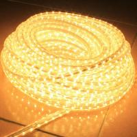Wholesale submersible led rope lights from china suppliers