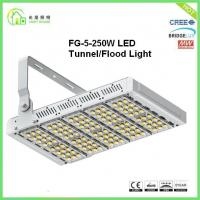 Wholesale UL CE RoHs Certifications Metal Halide Led Tunnel Lighting With Philips Chip from china suppliers