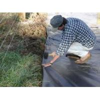 Cheap polypropylene woven fabric weed mat
