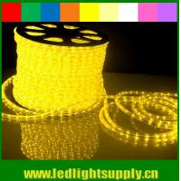 Wholesale led light stage curtain 1/2'' 2 wire rope light with low voltage 12/24v from china suppliers