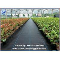 Wholesale Ground Cover Nets 3'x750' Weed Control Landscape Fabric from china suppliers