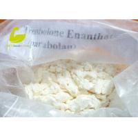Wholesale Testosterone Enanthate supplier White Crystalline Muscle Building Steroid Hormones Powder Testosterone Enanthate from china suppliers