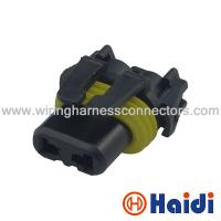 Wholesale Female 2 Pin Automotive Wiring Harness Connectors Multi Pin cable Plug 12059183 from china suppliers