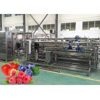 Wholesale Berry Paste Pulp Industrial Pasteurizer  Turnkey Processing Line Easy Clean from china suppliers