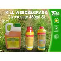 Wholesale Glyphosate 41% SL Selective Herbicide Control of perennial weeds  Cas No. 1071-83-6 from china suppliers
