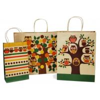 Wholesale Custom Printed Paper Shopping Bags Twisted Paper Handle Bottom Cardboard Design from china suppliers