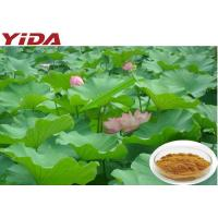 475-83-2 Lotus Root Powder / Seed Leaf Extract Nuciferine For Loss Weight