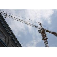 Wholesale Self Erecting Potain Tower Crane 12 Tons , 1.6x1.6x3m Mast Section from china suppliers